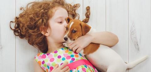 ¡Mamá, quiero un perro! Cómo equipar tu casa para la llegada de una mascota