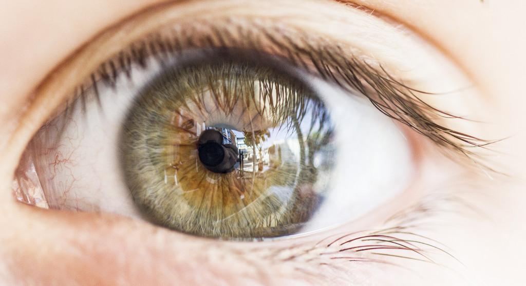 ojo macro