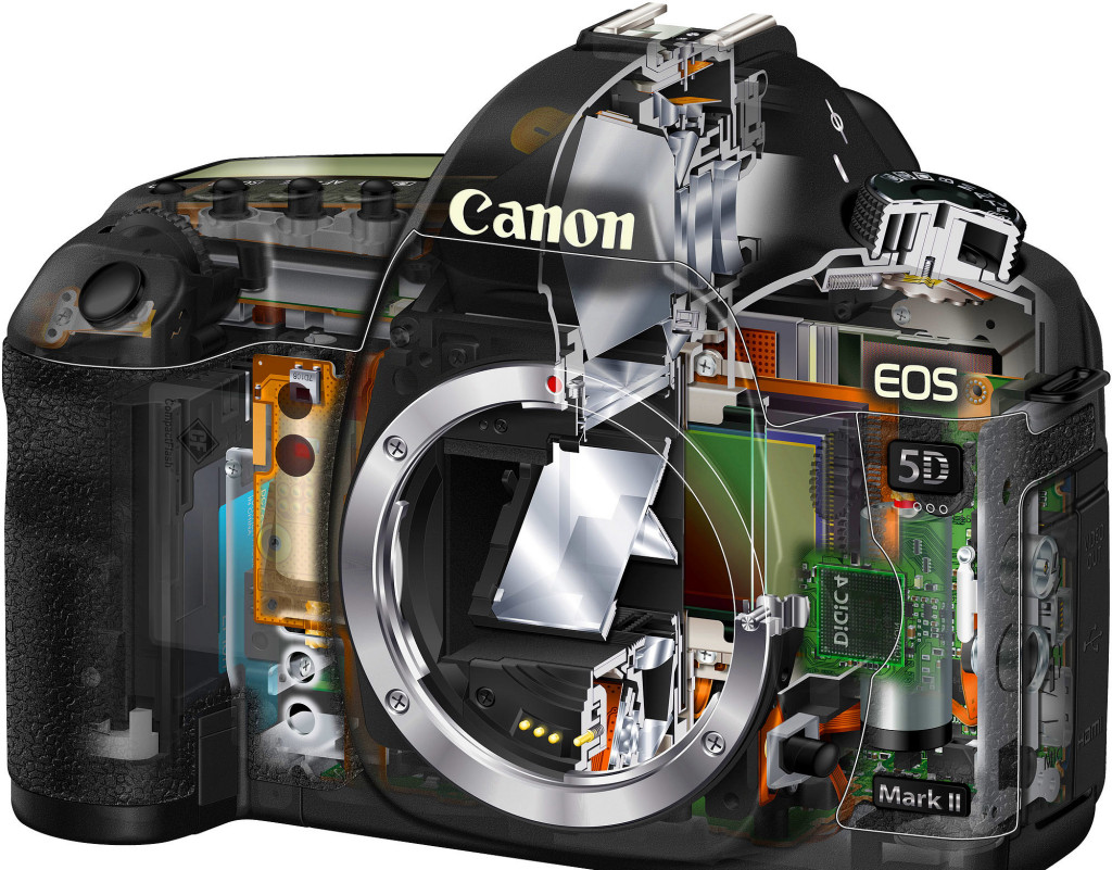 cutaway-2k